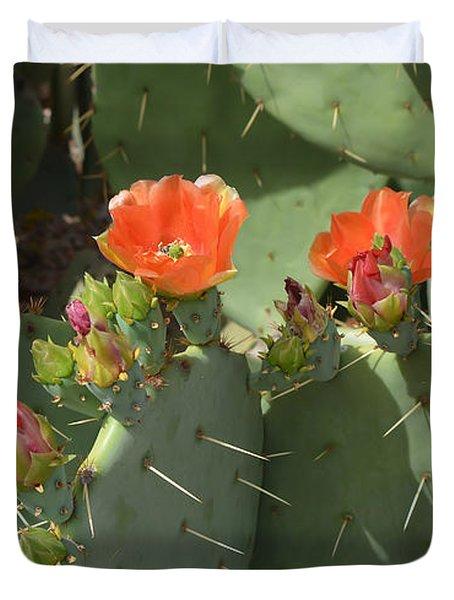 Orange Dream Cactus Duvet Cover by Aimee L Maher Photography and Art Visit ALMGallerydotcom