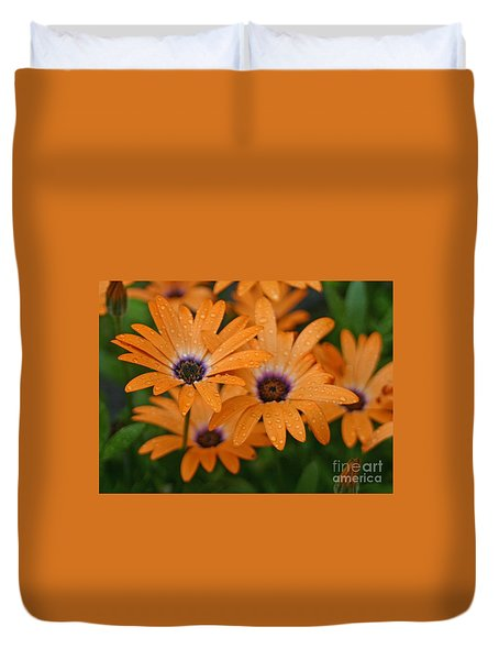 Orange Gazania Duvet Cover by Cindy Lee Longhini