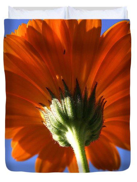 Orange Gerbera Flower Duvet Cover