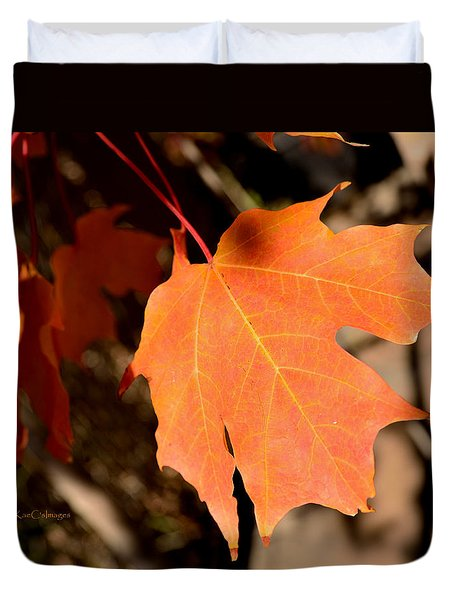 Orange Leaf Of Autumn Duvet Cover