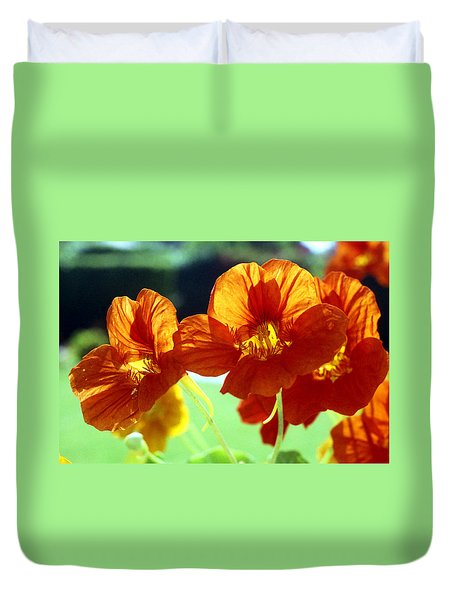 Orange Nasturtiums Duvet Cover