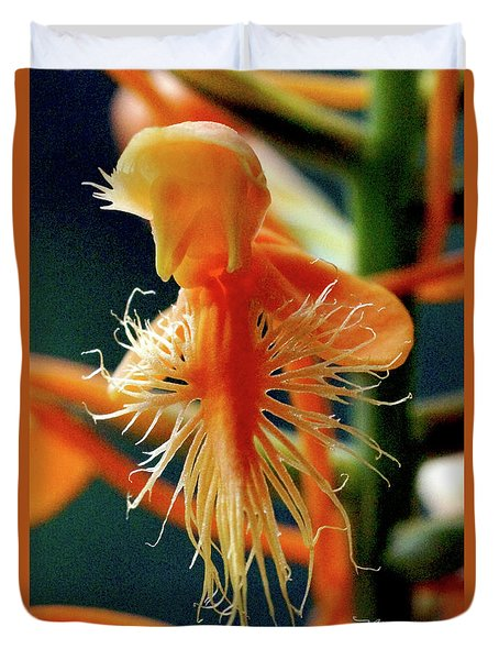 Fringed Orange Orchid Duvet Cover