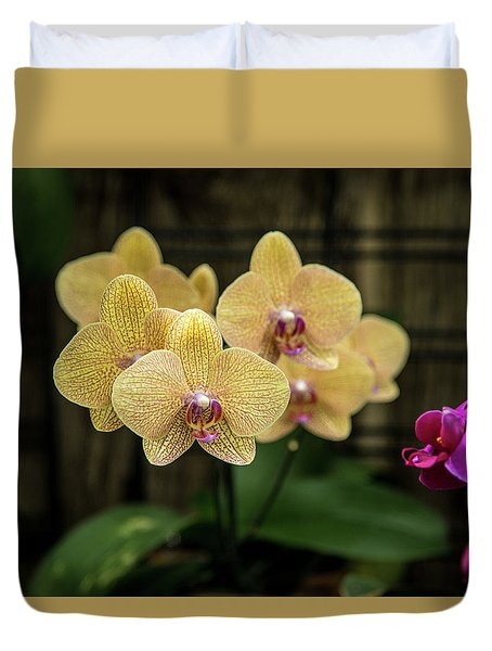 Orange Orchids Duvet Cover