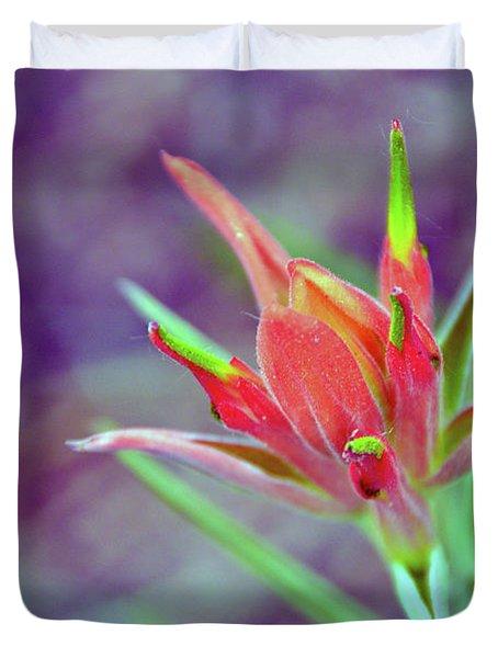 Orange Paintbrush Flower Duvet Cover