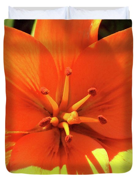 Orange Pop Duvet Cover