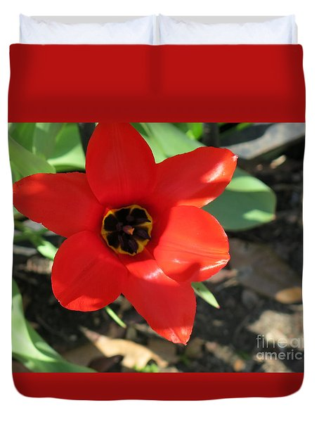 Orange Red Flower Duvet Cover