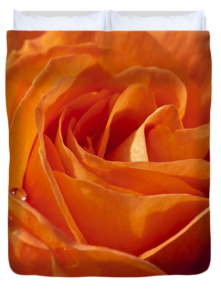 Orange Rose 2 Duvet Cover