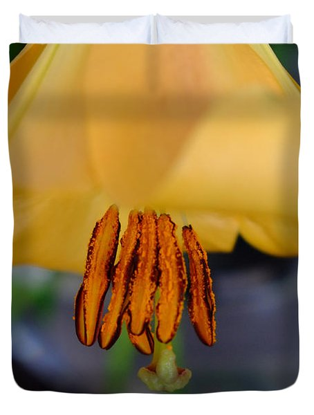 Orange Stamens Duvet Cover