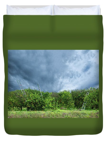 Duvet Cover featuring the photograph Orange Tree by Carolyn Dalessandro