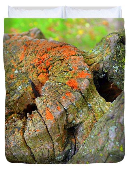 Orange Tree Stump Duvet Cover