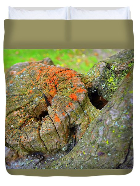 Duvet Cover featuring the photograph Orange Tree Stump by Richard Ricci