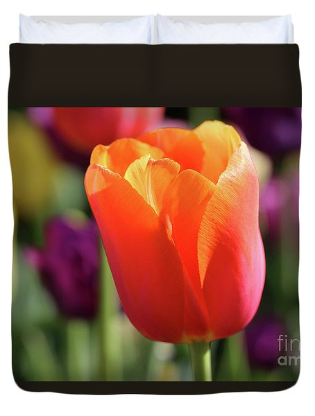 Orange Tulip In Franklin Park Duvet Cover