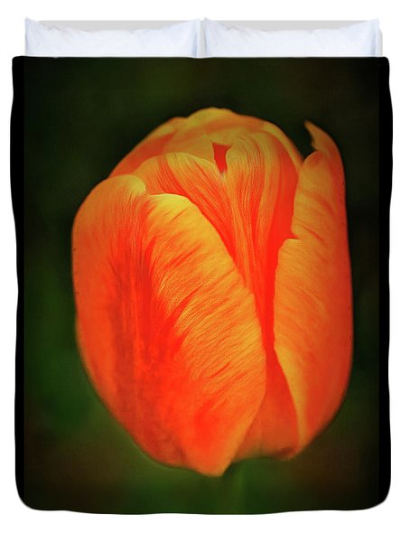 Duvet Cover featuring the photograph Orange Tulip Painting Neo Rembrandt Style by Matthias Hauser