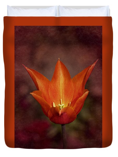 Duvet Cover featuring the photograph Orange Tulip by Richard Cummings