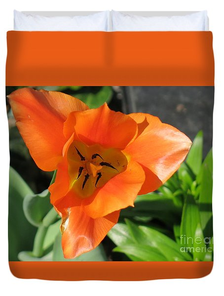 Orange Tulip Duvet Cover by Rod Ismay