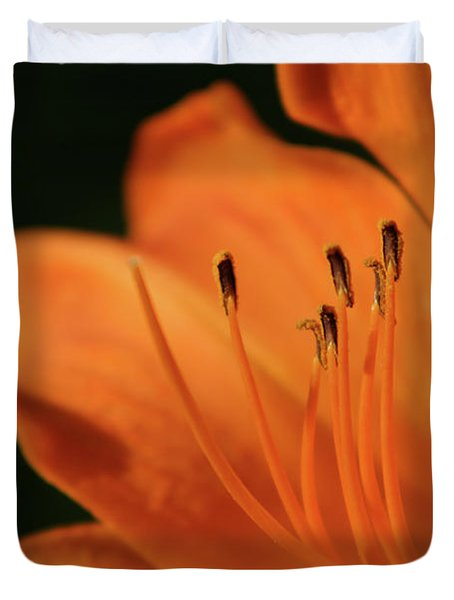Orange Wave 3096 H_2 Duvet Cover
