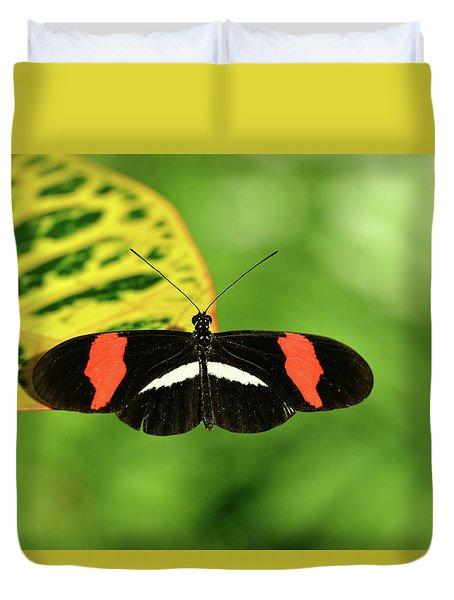 Orange, White And Black Butterfly  Duvet Cover
