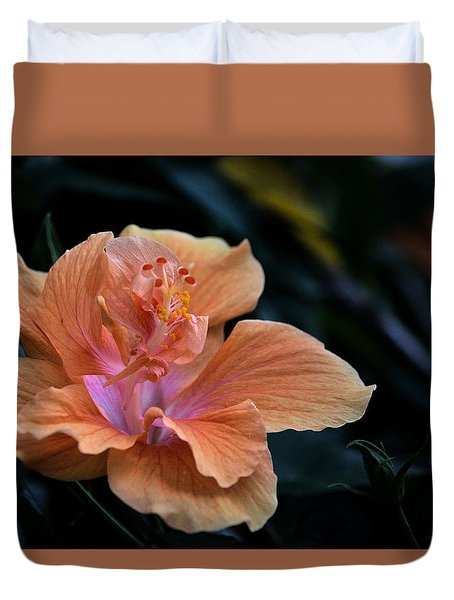 Orangecicle Duvet Cover by Robert McCubbin