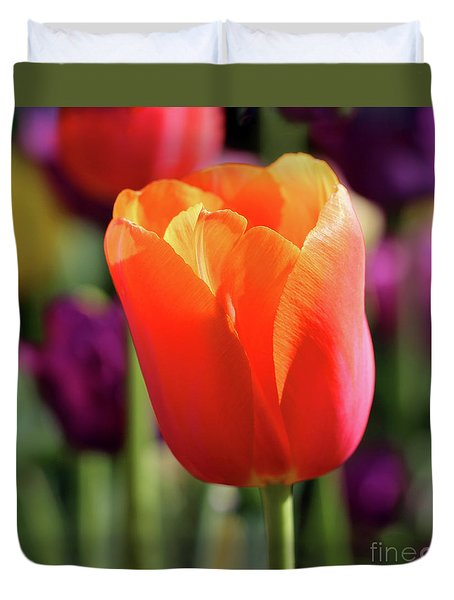 Orange Tulip Square Duvet Cover