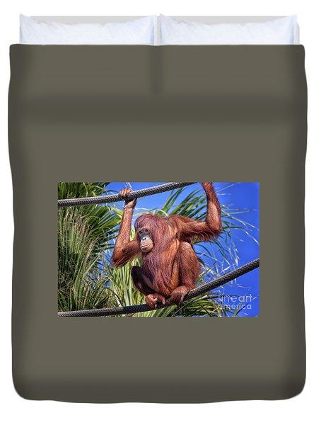Orangutan On Ropes Duvet Cover by Stephanie Hayes