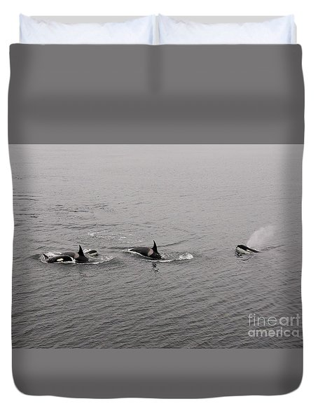 Orca Pod Duvet Cover by Sean Griffin