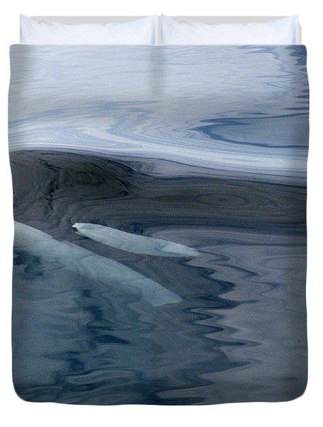 Orca Surfacing Southeast Alaska Duvet Cover by Flip Nicklin