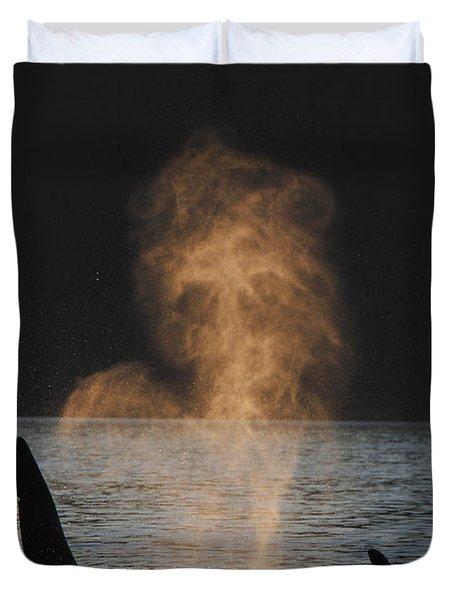 Orcas Ocinus Orca Spouting Alaska Duvet Cover by Hiroya Minakuchi