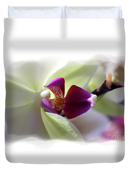 Orchid 2 Duvet Cover by David Bearden