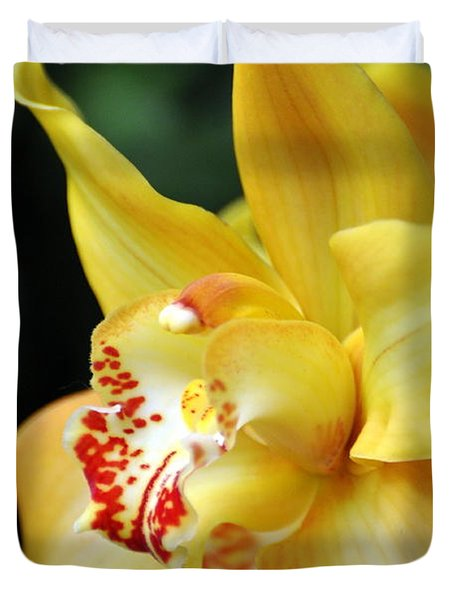 Orchid 24 Duvet Cover by Marty Koch