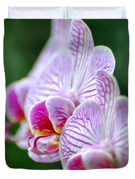 Orchid 30 Duvet Cover by Marty Koch