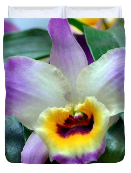 Orchid 34 Duvet Cover by Marty Koch