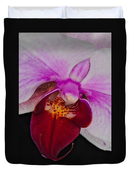 Orchid 376 Duvet Cover