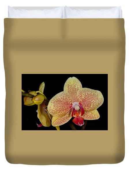 Orchid 377 Duvet Cover