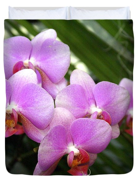 Orchid 4 Duvet Cover by Marty Koch