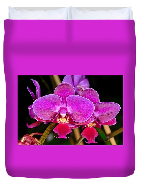Orchid 422 Duvet Cover