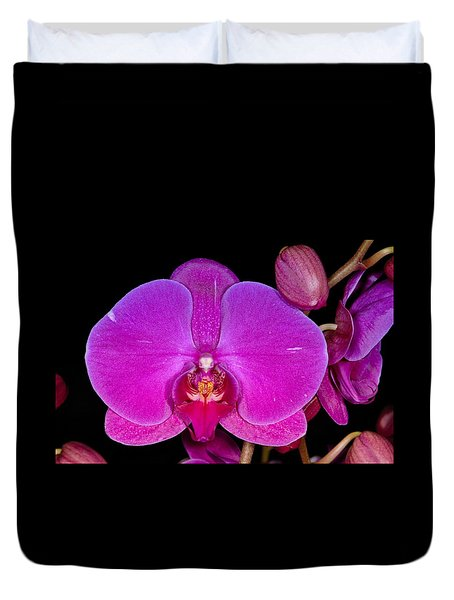 Orchid 424 Duvet Cover