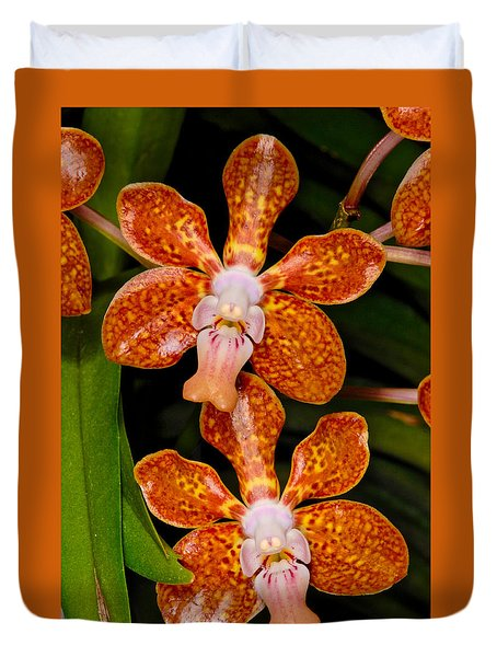 Orchid 450 Duvet Cover