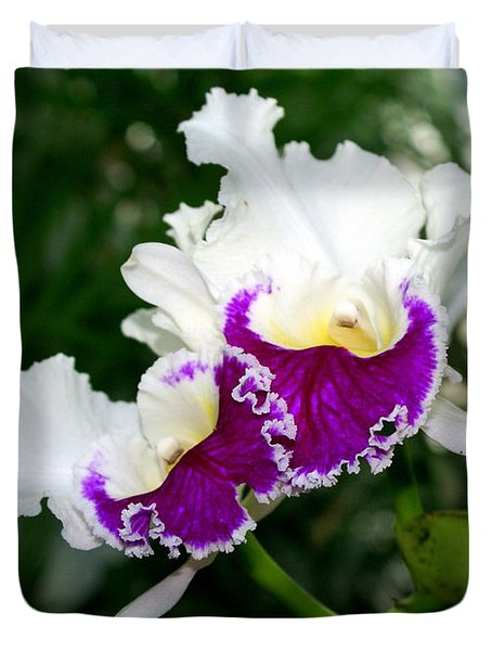 Orchid 6 Duvet Cover by Marty Koch