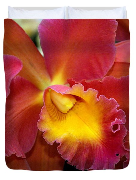 Orchid 8 Duvet Cover by Marty Koch