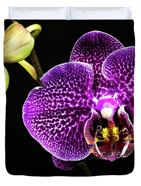 Orchid Duvet Cover by Christopher Holmes