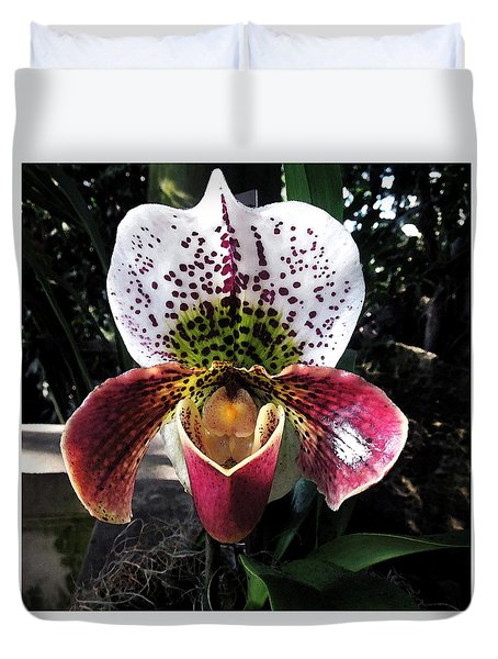 Orchid  Duvet Cover by Don Wright