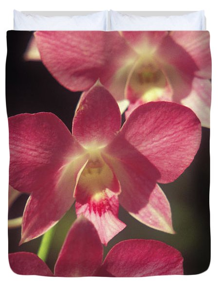 Orchid Flowers Duvet Cover by Kyle Rothenborg - Printscapes