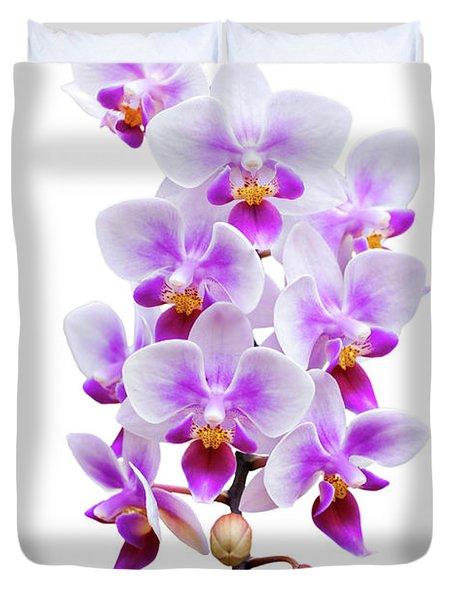 Orchid Duvet Cover by Meirion Matthias