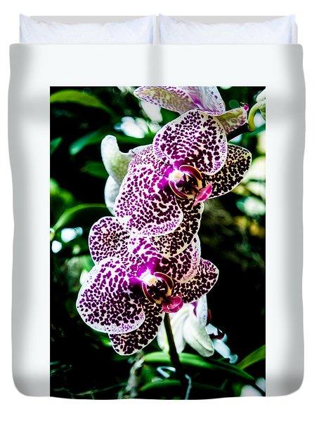 Orchid - Pla236 Duvet Cover