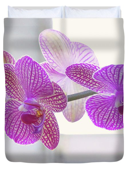 Orchid Spray Duvet Cover