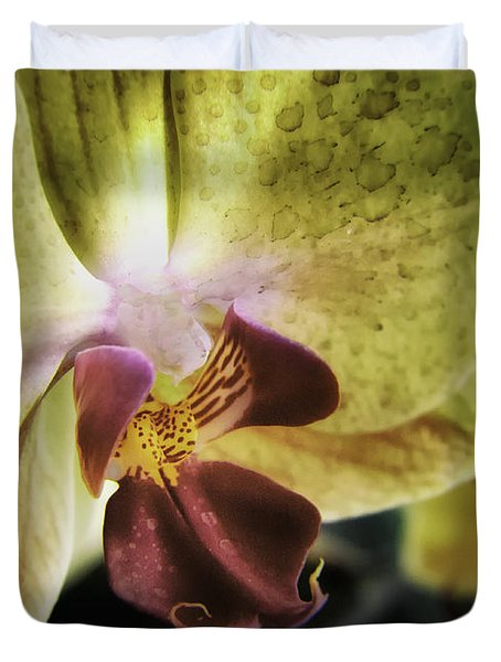 Orchid With A Tongue Duvet Cover
