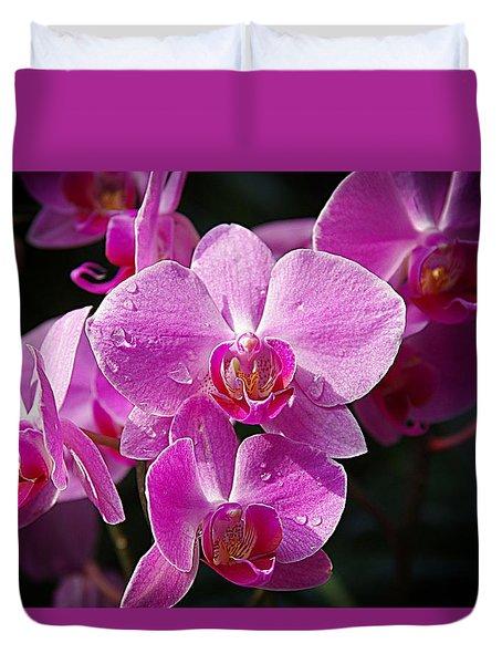 Orchids 4 Duvet Cover by Karen McKenzie McAdoo