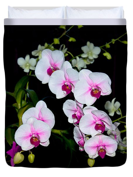 Orchids On Black Duvet Cover