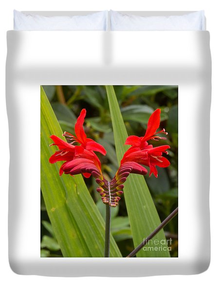 Oregon Flower 1 Duvet Cover