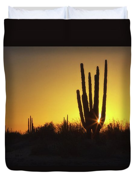 Organ Pipe Cactus Duvet Cover